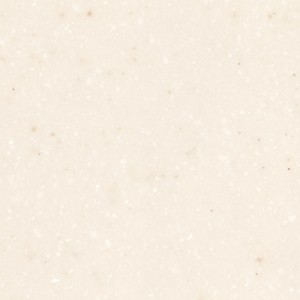 Aspen-Seashell